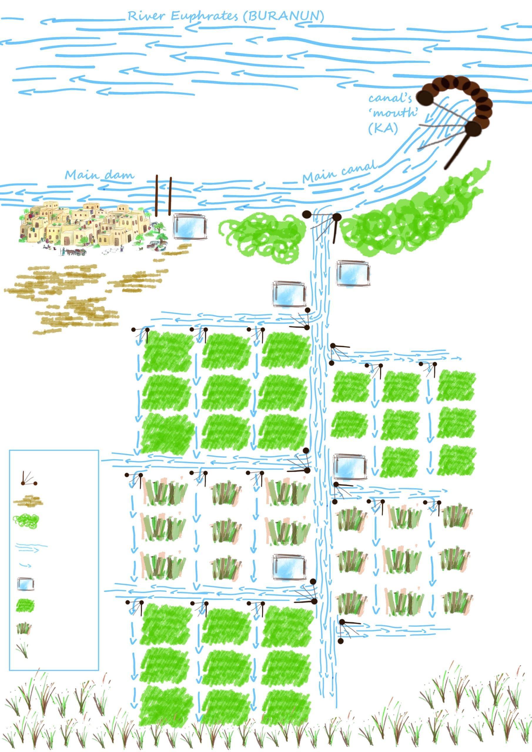 Irrigation network revu par Fanny