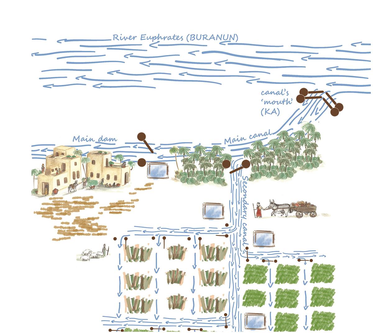 Irrigation crue (crop)_02